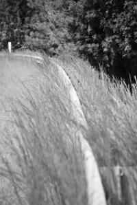Quiet Rail